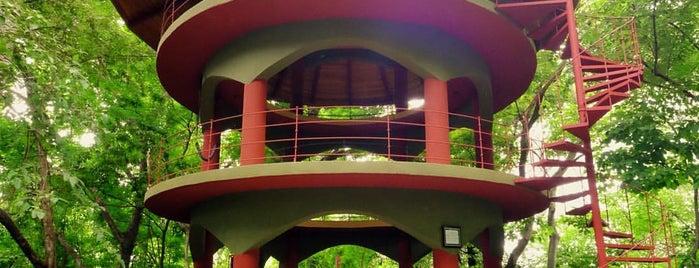 Nosara Yoga Institute is one of สถานที่ที่ Andrew ถูกใจ.