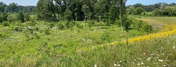 Middlefork Savanna Forest Preserve is one of Chicago.