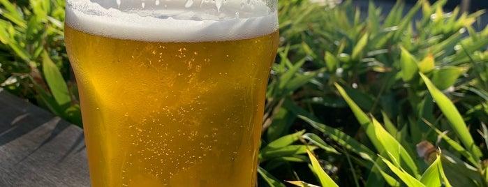 Topa Topa Brewing Company is one of Santa Barbara.