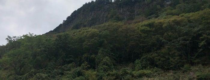 屏風岩公苑 is one of 大和の風物詩 11月.