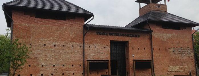 Traku Istorijos Muziejus is one of Tempat yang Disukai Carl.