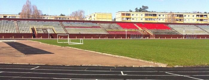 Стадион is one of สถานที่ที่ Алёна ถูกใจ.