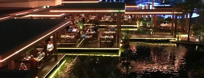 SeafoodBar is one of Limassol restaurants.