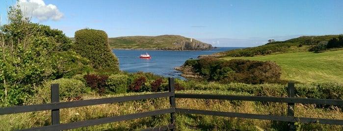 Islander's Rest is one of Posti che sono piaciuti a Loredana.