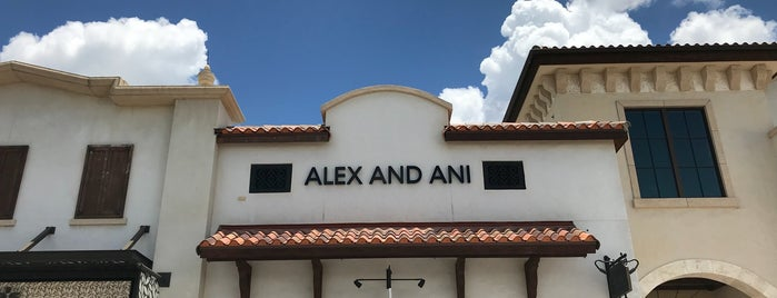 ALEX AND ANI is one of Disney Springs.