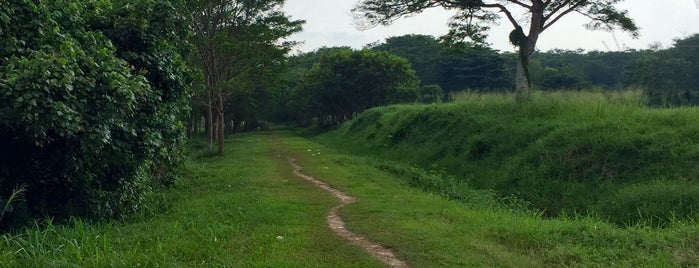 End of Former KTM Tracks (Mandai River) is one of Trek Across Singapore.