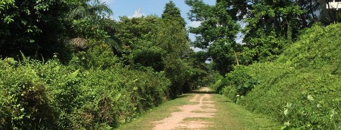 Jln Kilang Barat Railway Track is one of The Rail Corridor.