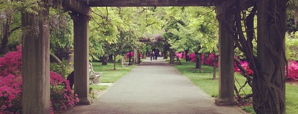 Rose Garden is one of Quirky Things to do in NYC.