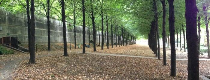 Parc de Bercy is one of Paris.