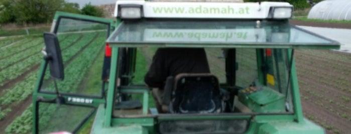 Biohof Adamah is one of Luups.