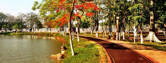 Parque La Pólvora is one of Armandoさんの保存済みスポット.