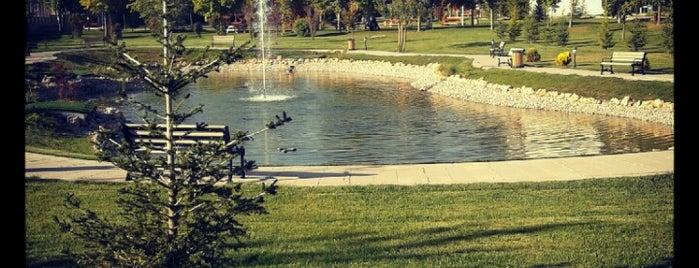 Atılım Üniversitesi is one of Locais curtidos por Ana 🍒.