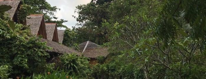 The Sanctuary is one of Bg pH.
