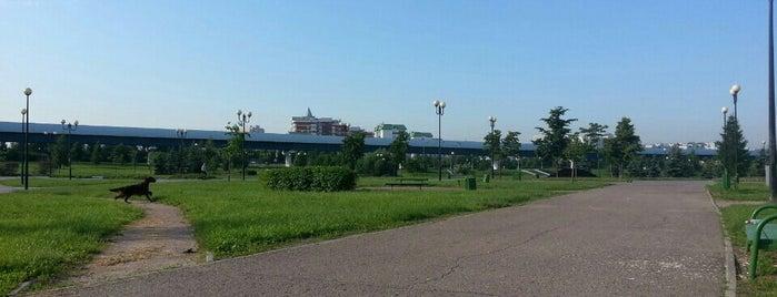 Детский ландшафтный парк is one of Сады и парки Москвы.