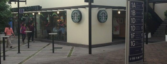 Starbucks is one of Lugares en la Condesa.