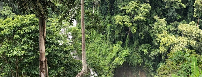 Seven Falls Zip Line is one of Favorite Great Outdoors.