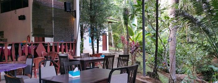 Rainforest Resort - Taman Negara is one of eyeNa07'ın Beğendiği Mekanlar.
