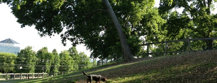 Centennial Dog Park is one of Sean : понравившиеся места.