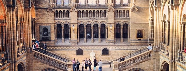 Natural History Museum is one of Мой список великих английских планов.