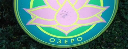Лебединое озеро is one of Выбор редакции.