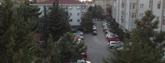 İdealtepe is one of Bağdat Caddesi ve Civarı.