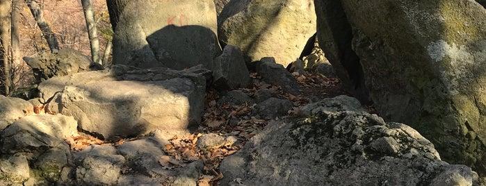 Csaba-kő is one of Budai hegység/Pilis.