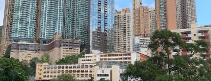 Tai Hang is one of Hong Kong.
