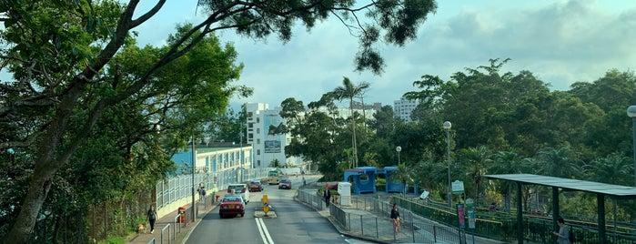 Choi Sai Woo Park is one of Hong Kong.
