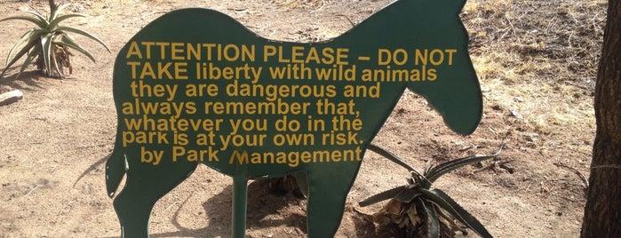 Tarangire National Park is one of Tempat yang Disukai Cat.