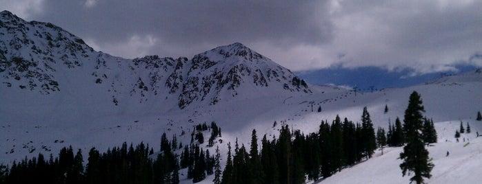 Black Mountain Lodge A-basin is one of Matt : понравившиеся места.