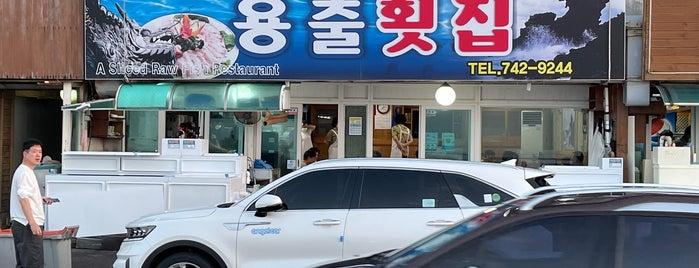 용출횟집 is one of seafood.