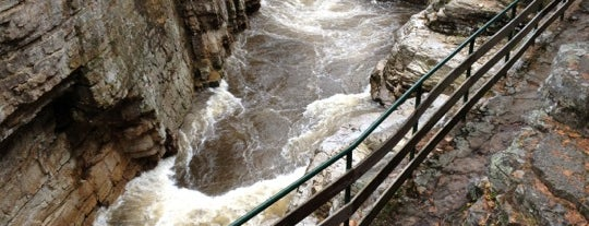 Ausable Chasm is one of adventures outside nyc.