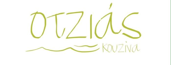 Otzias Kouzina is one of Posti che sono piaciuti a Myrto.