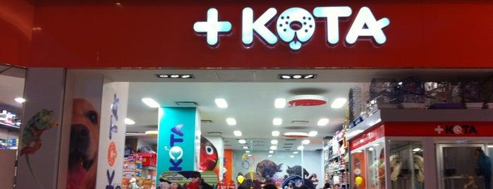 +Kota is one of Posti che sono piaciuti a Jack.