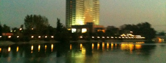 Adana Hilton is one of Hotels I checked in worldwide.