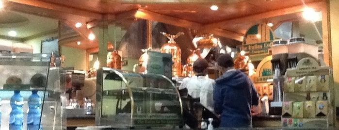 The Italian Coffee Zacatlán Centro is one of Aymara 님이 좋아한 장소.
