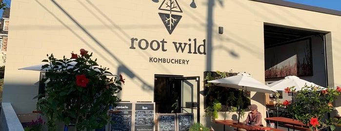Root Wild Kombuchery is one of Pt Maine.