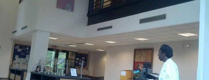 Jewish Life at Duke, Freeman Center is one of Where to Eat at Duke.