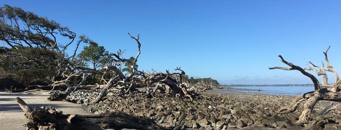 Driftwood Beach is one of Posti che sono piaciuti a Jarrad.