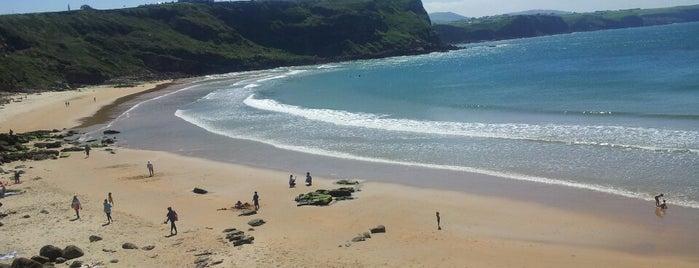 Playa de Los Locos is one of De turismo por Cantabria.