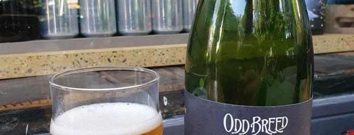Bierbaum is one of Amsterdam Best: Food & drinks.