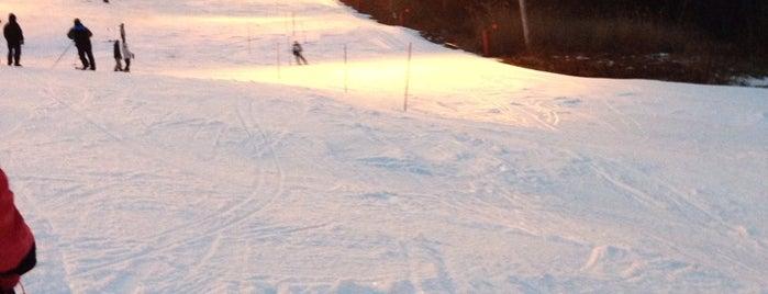 Holiday Mountain Ski & Fun Park is one of Around Narrowsburg.