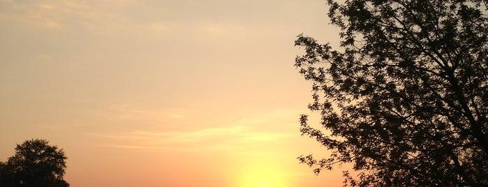 Измайловский остров is one of Просто удивительно!!!  Вы знаете, что....