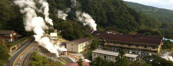 Kirishima Kokusai Hotel is one of Lugares favoritos de Shigeo.