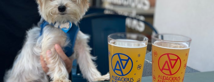 Audacious Aleworks is one of Breweries I've been to.