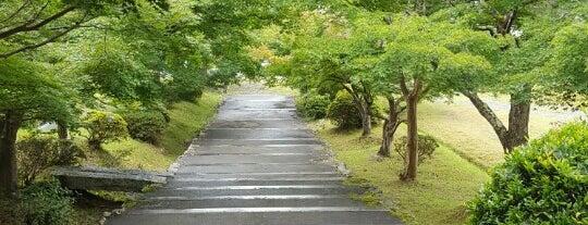 石像寺 is one of Mirei Shigemori 重森三玲.