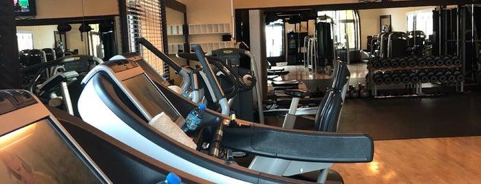 shangri la gym is one of Lugares favoritos de Gordon.