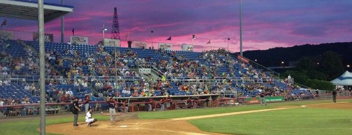 NYSEG Stadium is one of Minor League Ballparks.