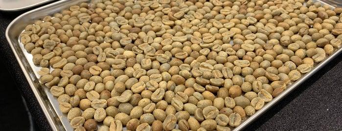 COFFEE BASE KANONDO is one of Gespeicherte Orte von Whit.