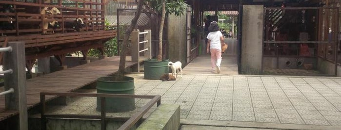 Kuntum Nurseries is one of Iyanさんのお気に入りスポット.